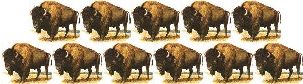 buffalo buffalo buffalo buffalo buffalo buffalo buffalo buffalo buffalo buffalo buffalo