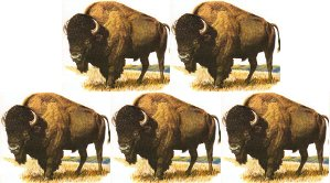 buffalo buffalo buffalo buffalo buffalo